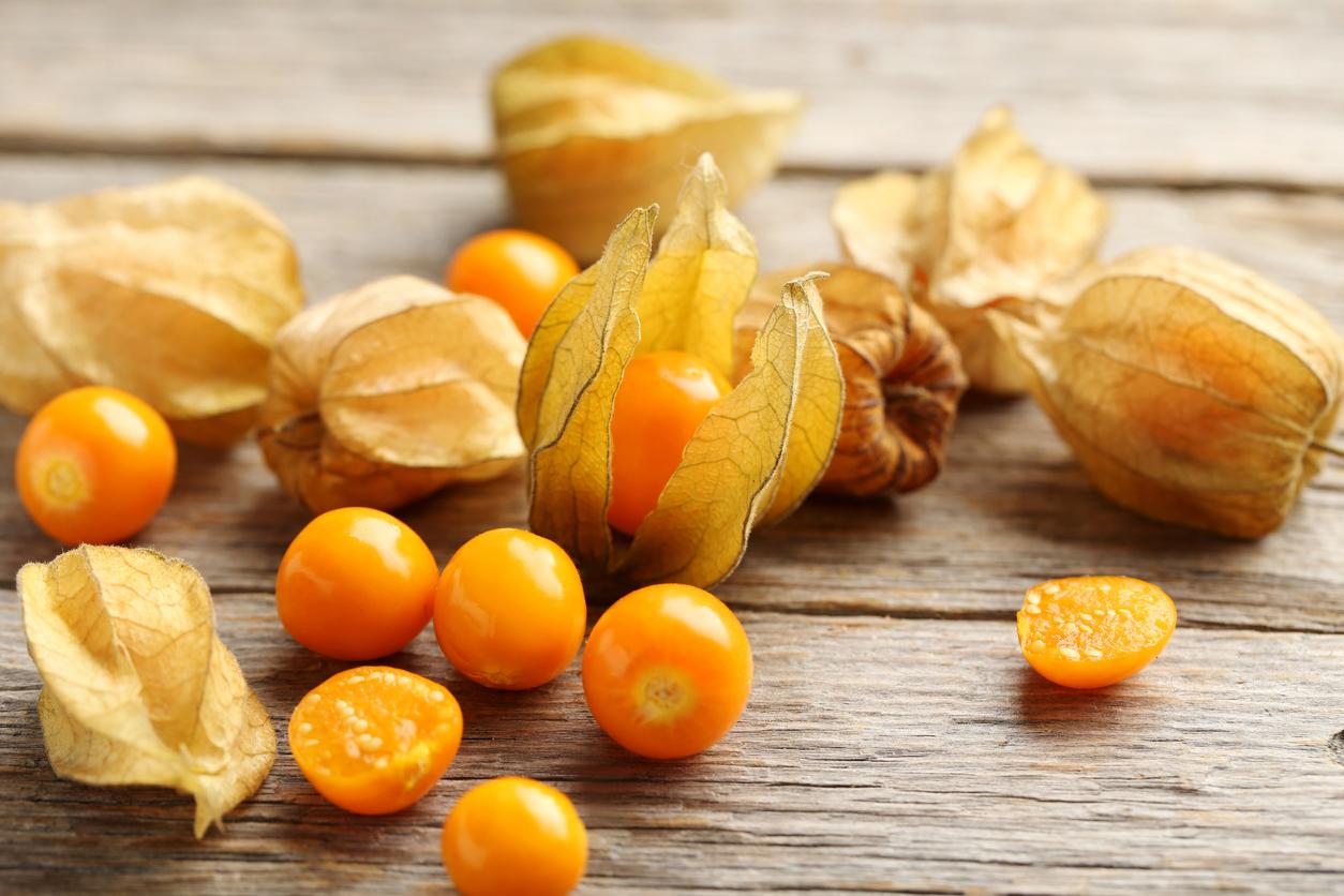 Physalis, conheça os benefícios desse fruto