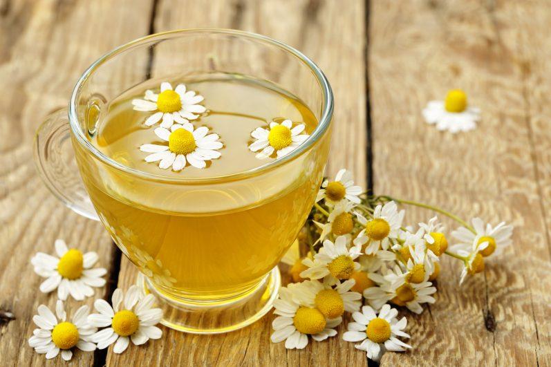 Chás relaxantes: Conheça 5 ervas calmantes que ajudam a dormir melhor