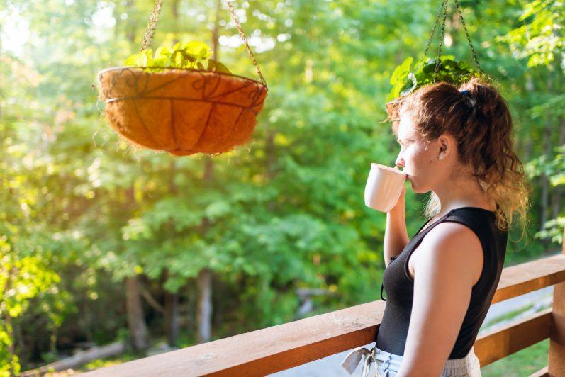 Conheça os benefícios do chá de espinheira santa