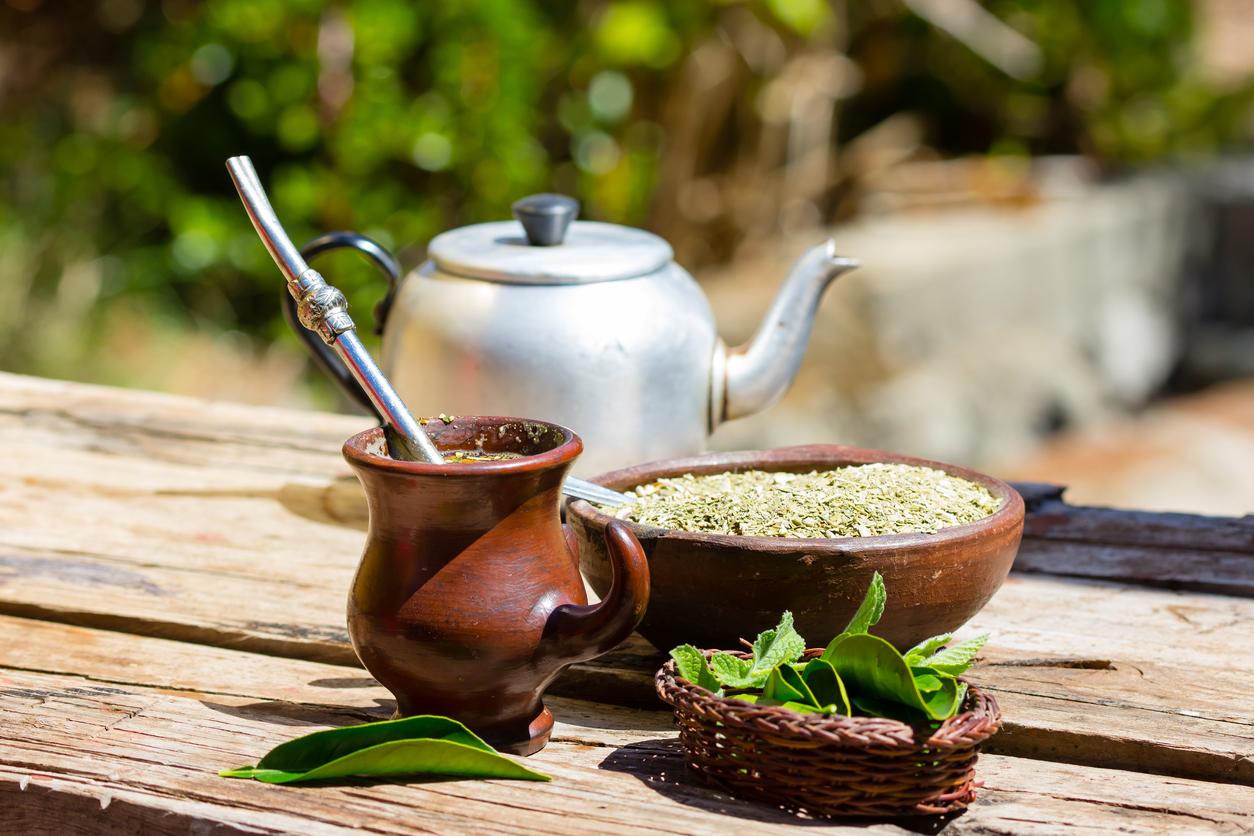 7 benefícios da erva-mate e do chá mate