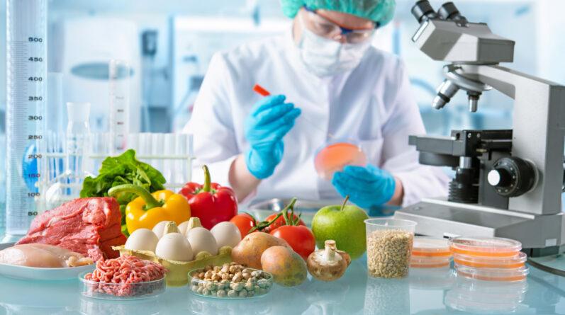 Quais são as principais tendências para o mercado de alimentos?